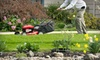 Egypt Creek Lawn and Landscape - Grand Rapids: Four Weeks of Lawn-Mowing Services with Optional Yard Cleanup from Egypt Creek Lawn Care & Maintenance (51% Off)