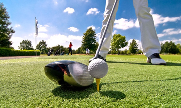Alf's Golf Shop - Doral: One or Two 60-Minute Golf Lessons with Launch Monitor Swing Analysis at Alf's Golf Shop (Up to 63% Off)