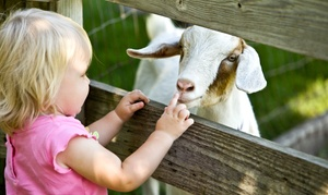 Green Meadows Farm: Petting-Farm Visit for One or for Two Kids at Green Meadows Farm (Up to 48% Off)