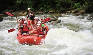 Big Frog Expeditions: $55 for a Whitewater-Rafting Adventure for Two from Big Frog Expeditions ($90 Value)
