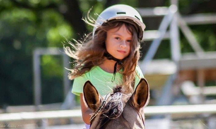 RNR Stables - Post Oak Crossing: Kids' Horseback-Riding Summer Camp or Riding Sessions from RNR Stables ($400 Value). 15 Options Available.