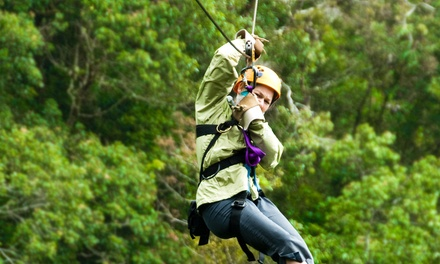 Three-Hour Tree-Trekking Climb and Zip Lining with Optional  Sportsland Play at Santa's Village (Up to 46% Off)