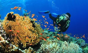 Plongee Cpas: PADI Diving Course and Certification for One or Two with Plongée CPAS (Up to 56% Off)