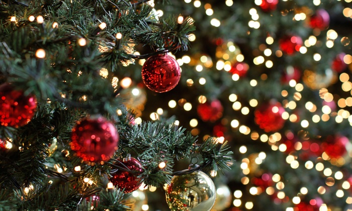Kurt S. Adler, Inc. - Mission Bay: $25 for $50 Worth of Christmas Decorations at wholesale pricing at Kurt S Adler