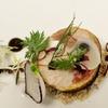 50% Off Seasonal BYOB American Cuisine