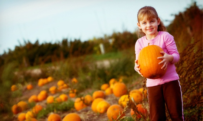 Safari Wilderness Ranch - Lakeland: The Great Pumpkin Safari Outing for One Child or Adult from Safari Wilderness Ranch (Up to 52% Off)