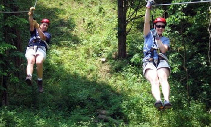 Dagaz Acres - Rising Sun: $165for a Guided Zipline Tour for Up toEightPeople at Dagaz Acres ($360 Value)