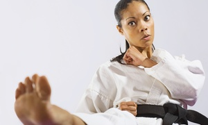 The Kokoro Samurai: $20 toward an 8 Week Self Defense Course ($45 Value)