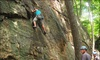 Up to 63% Off Rock-Climbing Course
