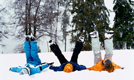 $269 for Winter Snowshoe Birthday Party for 10 Kids at Humber Arboretum ($450 Value)