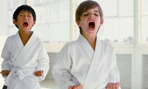 Go2Karate: 10 Martial-Arts Classes with Uniform, or 16 Classes with a Uniform, Test, and Graduation Belt from Go2Karate (94% Off)