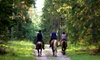 Serenity Stables LLC - Woodhaven Farms: $22 for $40 Worth of Services at Serenity Stables