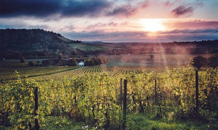 Sparkling Wine Tasting Experience for One or Two at Denbies Wine Estate (Up to 36% Off)