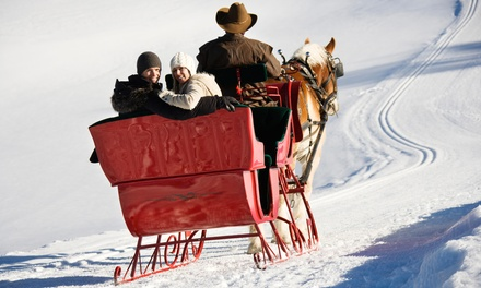 Horse-Drawn Sleigh Ride for Two, Four, or Up to Eight from Garden Valley Trail Rides (Up to 58% Off)