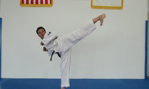 Traditional Tae Kwon Do: Four Weeks of Unlimited Martial Arts Classes at Traditional Tae Kwon Do (60% Off)