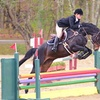 Up to 42% Off Private Horseback-Riding Lessons