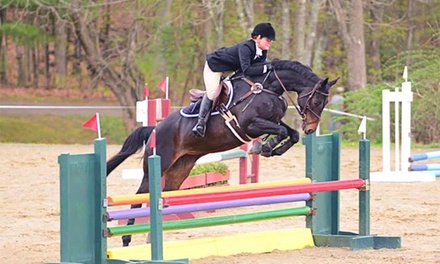Two or Four 30-Minute Private Horseback-Riding Lessons at Pine Fall Farm (Up to  Off)