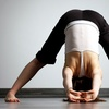 Up to 67% Off Yoga at A Jewel in the Lotus