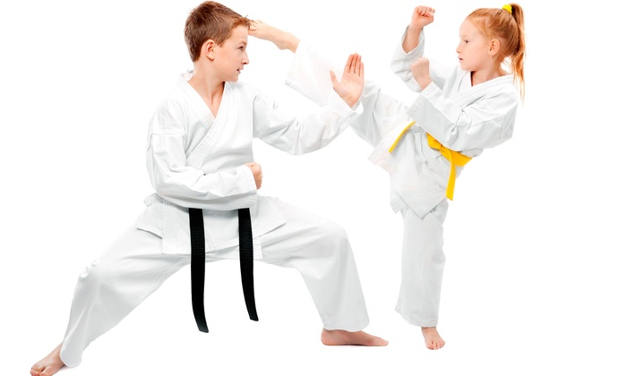 Pro Martial Arts, Apex - Beaver Creek Crossings: $29 for a Month of Martial-Arts and Armor Classes with Uniform at Pro Martial Arts, Apex ($168.95 Value)