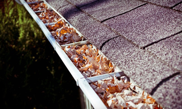 New Look Construction - Dudley - Brunswick King: Gutter-Cleaning Services from New Look Construction (Up to 78% Off). Three Options Available.