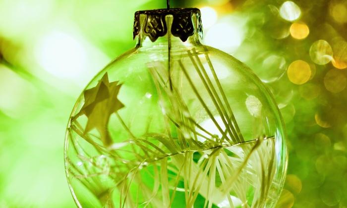 Terrarium Ornament-Making Class - Luludi Living Art Store: Create a Living Ornament in a Holiday Terrarium-Making Class