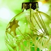 Create a Living Ornament in a Holiday Terrarium-Making Class