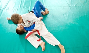 Athlete's Arena: One or Three Months of Brazilian Jiu-Jitsu Classes for Adults or Kids at Athlete's Arena (Up to 63% Off)