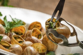 The Olive Bar: $6 for $10 Worth of Gourmet Food — The Olive Bar