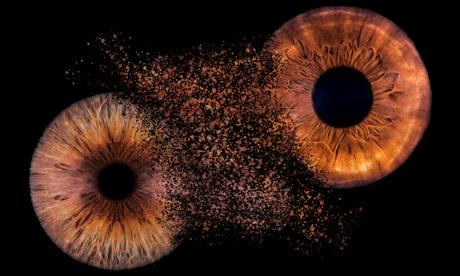 1 Foto der Iris als Nahaufnahme inkl. Ausdruck für 1 oder 2 Personen im Fotostudio Motive44  in Regen