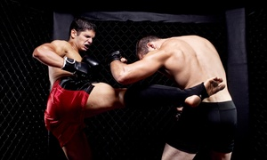 Combined Martial Science Inc: One Month of Unlimited Martial Arts Classes for One or Two at Combined Martial Science Inc (Up to 80% Off)