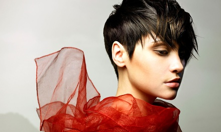 Haircut with Deep Conditioner and Style from Kelli at Beatific in Sola Salon (Up to 51% Off)
