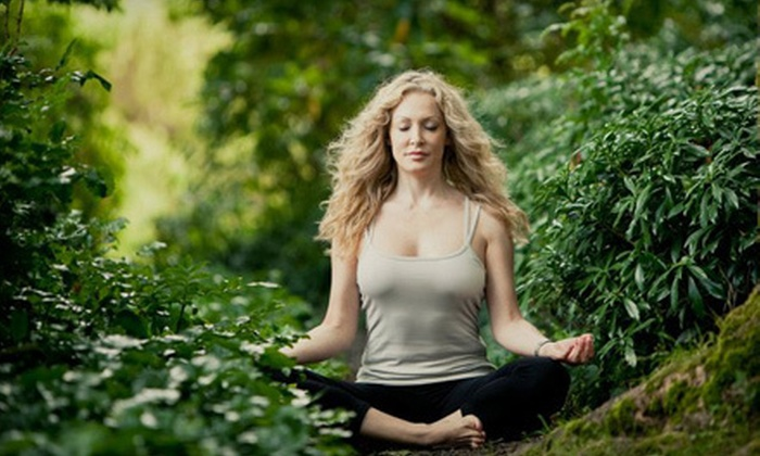 Vancouver Corporate Yoga - Vancouver Corporate Yoga: 10 Drop-In Yoga Classes for 1 or a Corporate Yoga Class for Up to 15 from Vancouver Corporate Yoga (Up to 51% Off)