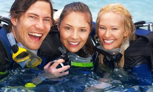 Sugar Land Dive Center: Discover Scuba Class or Open-Water Scuba Certification Class at Sugar Land Dive Center (Up to 51% Off)