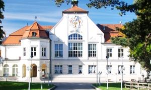 Augustiner Schützengarten: Bayerisches 3-Gänge-Menü für 2, 4 oder 6 Personen im Augustiner Schützengarten (bis zu 51% sparen*)