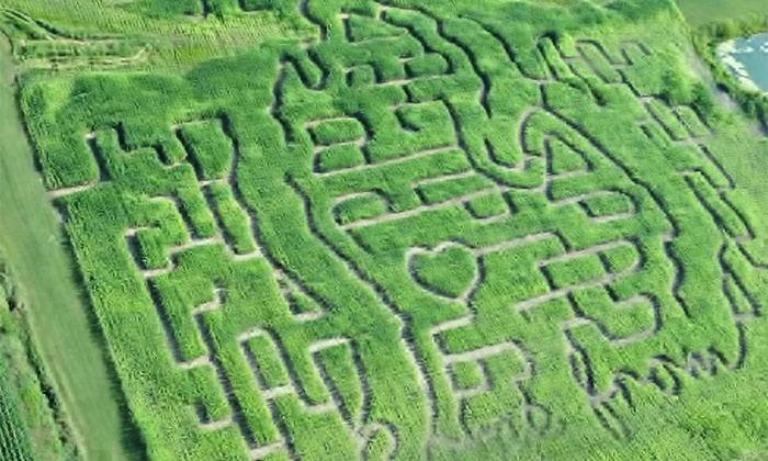Ed Dunneback & Girls Farm Market - Westside Connection: $12 for a Corn-Maze Adventure and Wagon Ride for 4 at Ed Dunneback & Girls Farm Market (Up to $24 Value)