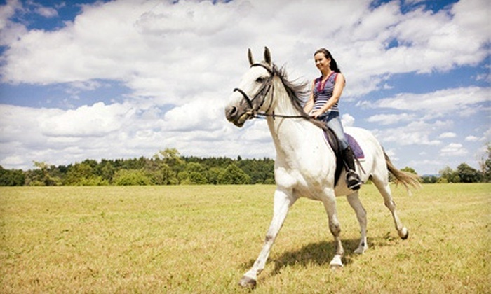 Stone River Farms - Weatherford Northwest: Kids' Horse Day Camp or Three Riding Lessons and One Trail Ride at Stone River Farms (Up to 62% Off)