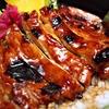 45% Off Japanese Cuisine at Teriyaki Don