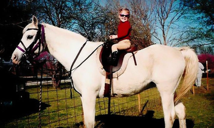 Labzara Ranch - Broken Arrow: One, Two, or Three 60-Minute Horseback-Riding Lessons at Labzara Ranch (Half Off)