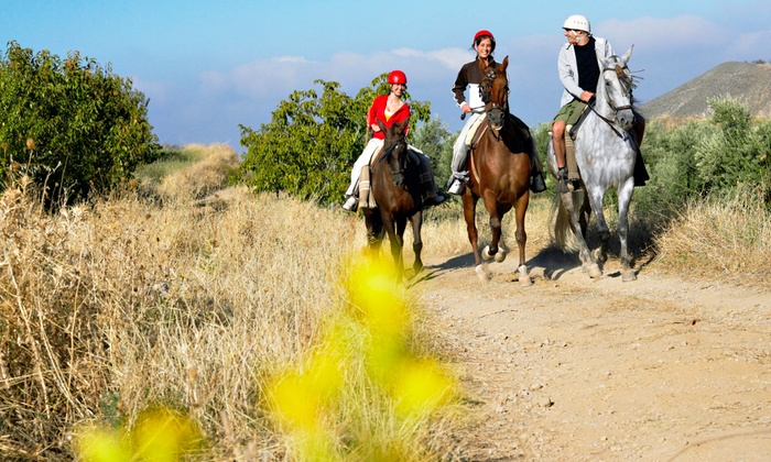 Winding Creek Stables - 5: Guided Horseback Nature Tour for Two or Four from Winding Creek Stables (Up to 50% Off)
