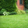 61% Off Lawn Aeration from Emerald Lawns