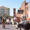 24% Off Fort Worth Stockyards Segway Tour