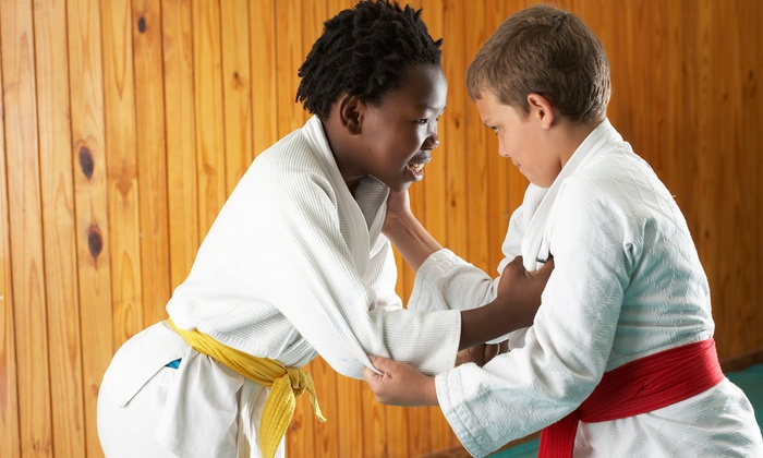 null - Westampton: One Month of Karate Classes for One or Two Kids at Westampton Martial Arts (Up to 64% Off)