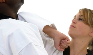 DeStolfo's Premier Martial Arts: One or Two Months of Adult Martial Arts and Kickboxing Classes at Destolfo's Premier Martial Arts (Up to 69% Off)