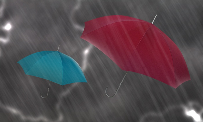London Fog Umbrellas: London Fog Umbrellas. 11 Options from $14.99–$26.99. Free Returns.
