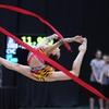 $10 for USA Gymnastics Event on May 10