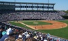 New York Yankees - George M. Steinbrenner Field: New York Yankees Spring Training Game with Food at George M. Steinbrenner Field (40% Off). Three Games Available.