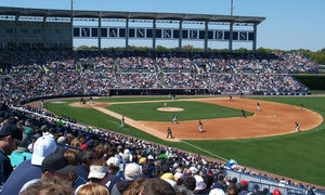 New York Yankees Spring Training: New York Yankees Spring Training Games with Food Voucher (March 2–11)