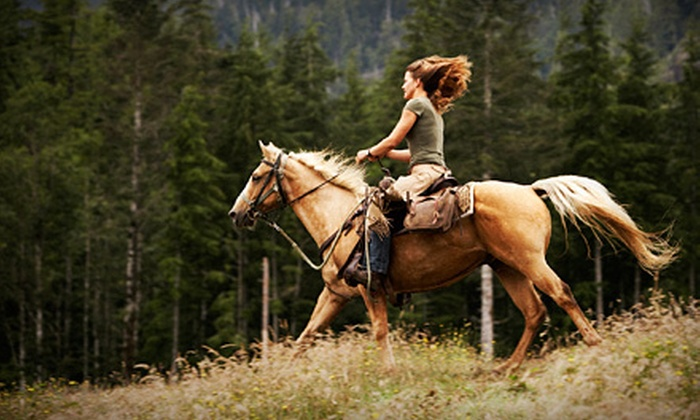 Starlite Farm - Moody: Two or Four 30-Minute Private Horseback-Riding Lessons at Starlite Farm (Up to 59% Off)