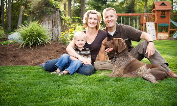 GrowinGreen - Stockton Homes: $94 for $200 Worth of Lawn Treatments from GrowinGreen