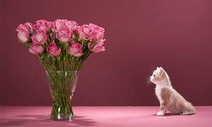 Floristería Mariflauers: Ramo de 6, 12 o 18 rosas con color a elegir desde 12,95 € en Floristería Mariflauers